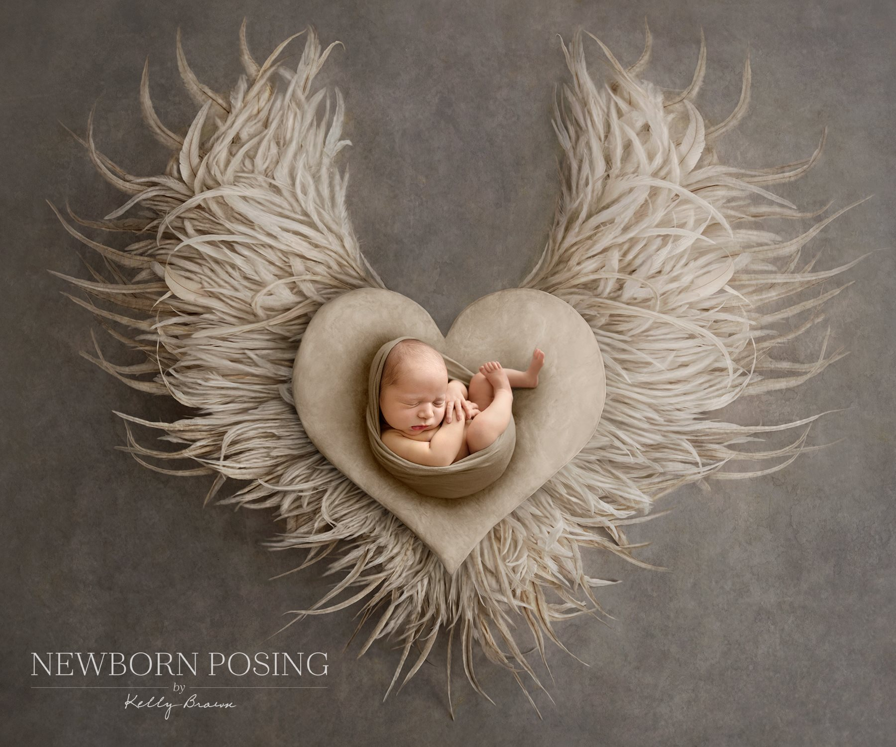 Newborn photography of baby in heart with wings