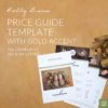 newborn photography price guide template gold